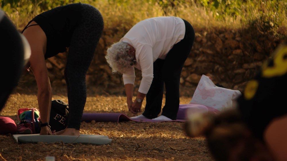 ioga entre oliveres