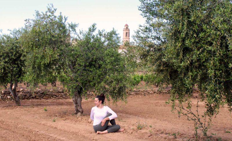 ioga-entre-oliveres